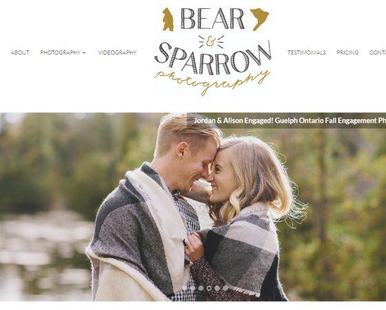 bear and sparrow